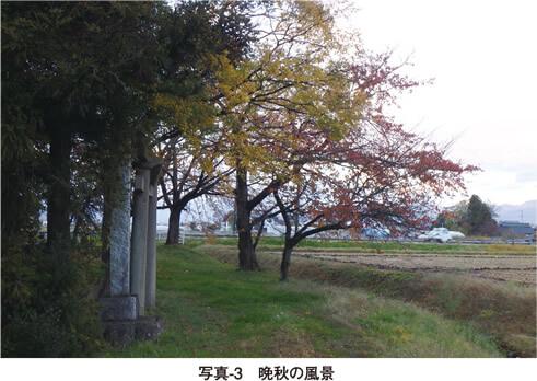 写真3 晩秋の風景