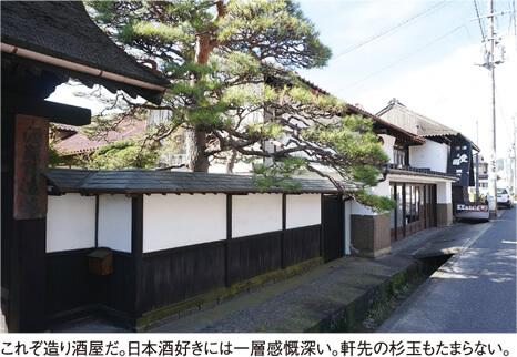 これぞ造り酒屋だ。日本酒好きには一層感慨深い。軒先の杉玉もたまらない。