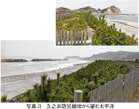 写真-3 久之浜防災緑地から望む太平洋